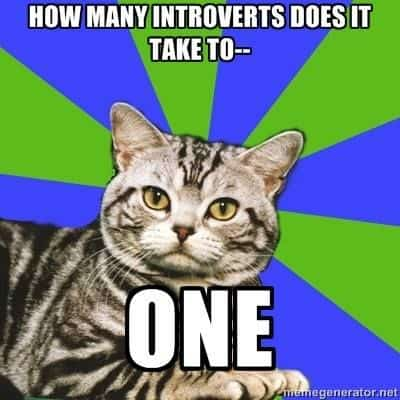 introvert meme cat how many does it take