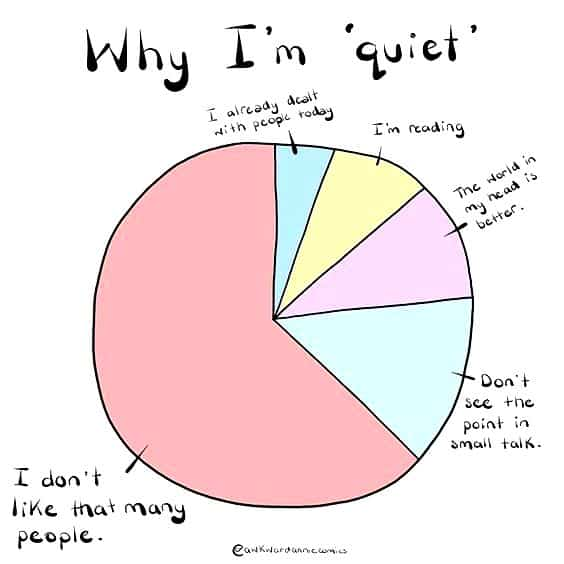 why introverts are quiet meme